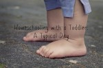 Homeschooling with a Toddler – a Typical Day
