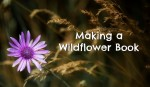 Making a Wildflower Book