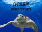 Ocean Unit Study