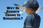 Why Do Parents Choose to Homeschool?