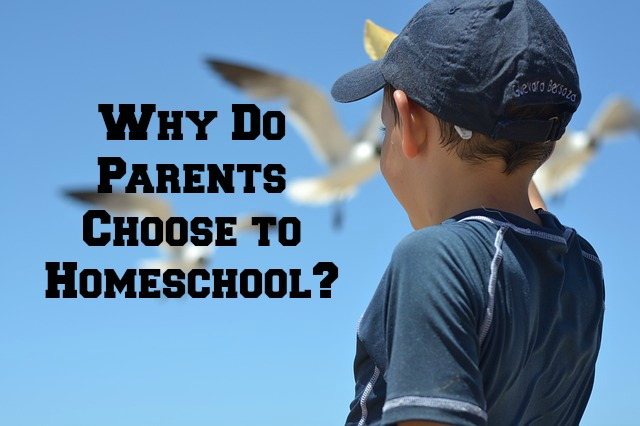 Why Do Parents Choose to Homeschool
