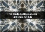Free Hands-On Neuroscience Activities for Kids