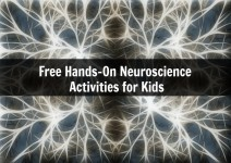 Free Hands-On Neuroscience for Kids