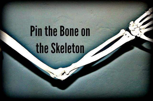 Pin the Bone on the Skeleton