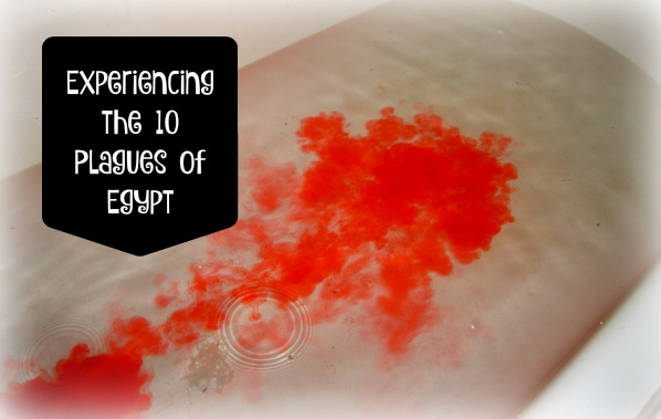 Experiencing the 10 Plagues of Egypt