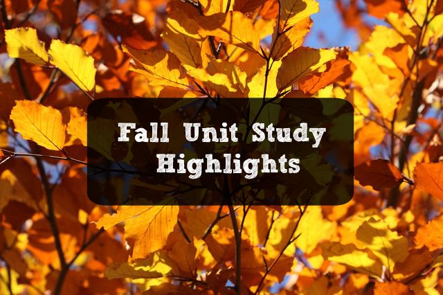Fall Unit Study Highlights