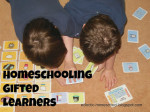 Homeschooling Gifted Learners