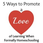 5 Ways to Promote a Love for Learning When Formally Schooling