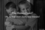 You Homeschool?  Oh, So You Don't Have Any Friends!