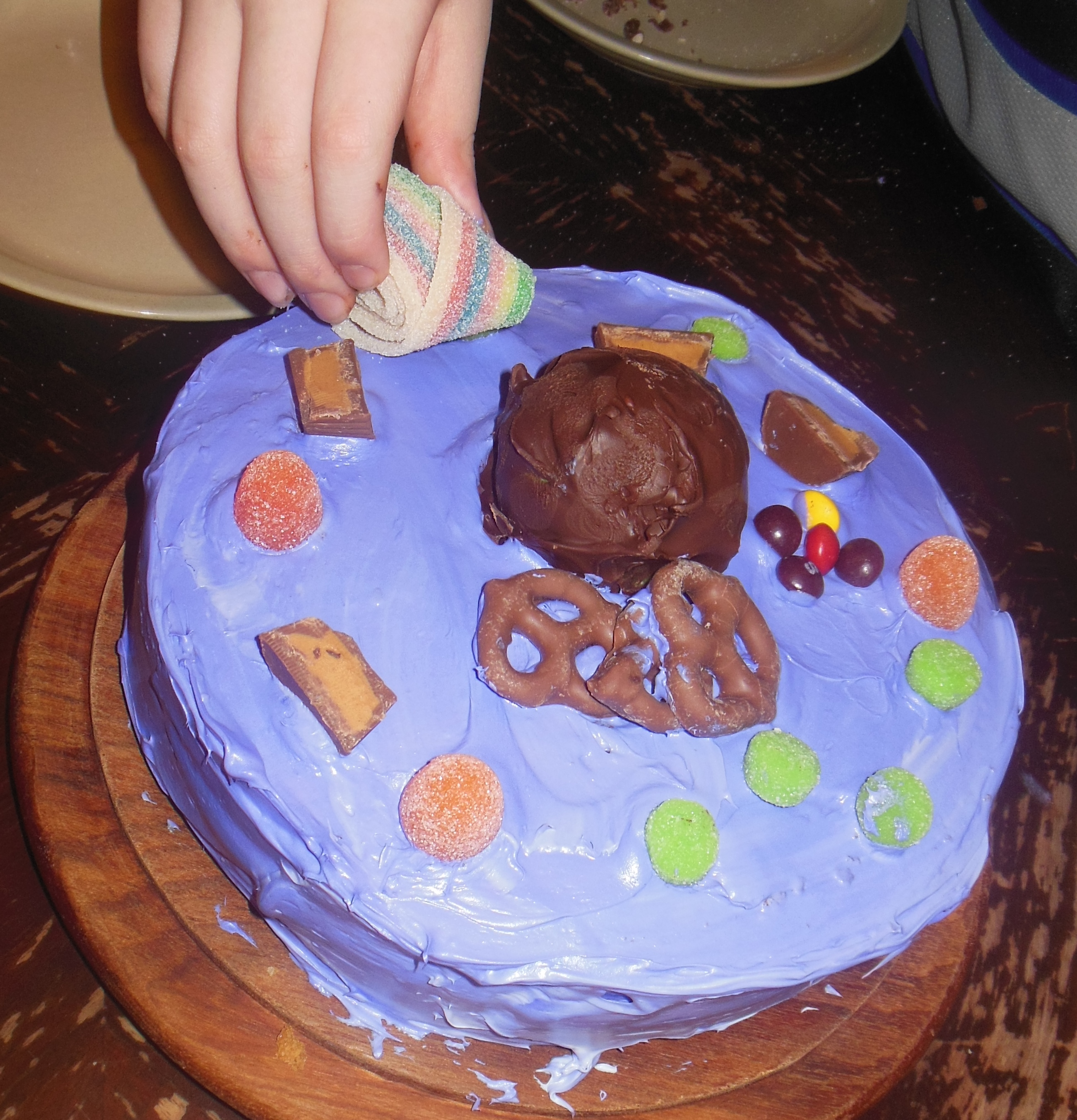 Animal Cell Made Of Cake And Candy