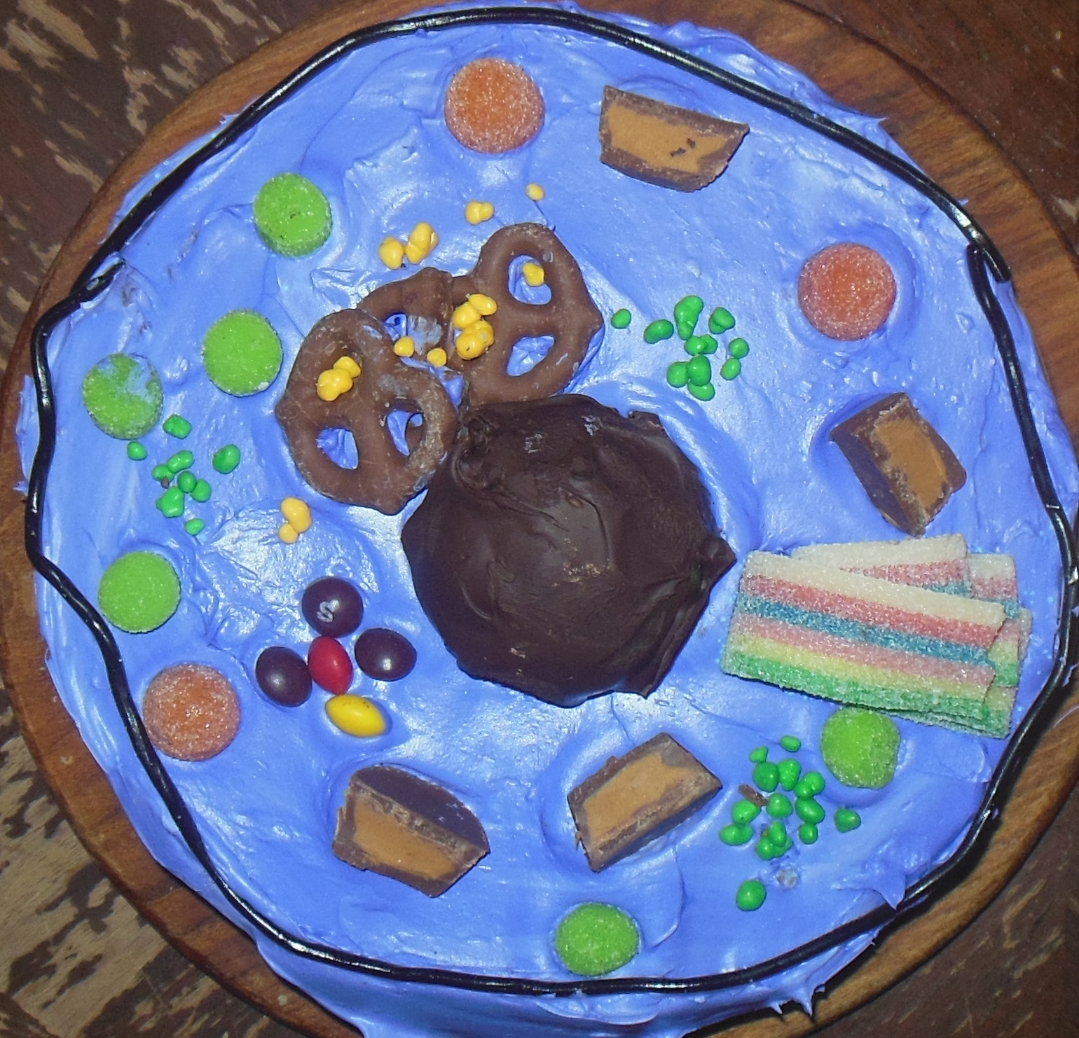 animal cell project cake www pixshark com images galleries with a bite diagram plant cells and animal cells diagram of plant cell labeled