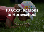 10 Great Reasons to Homeschool