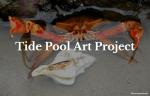 Tide Pool Art Project