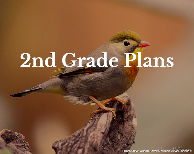 2nd Grade Plans