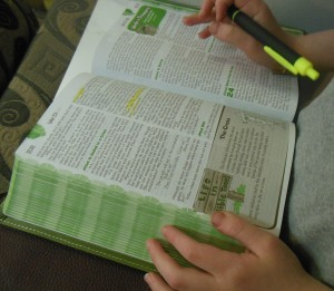 Adventure Bible in action