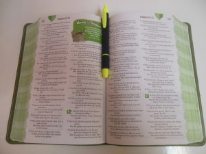 Adventure Bible open