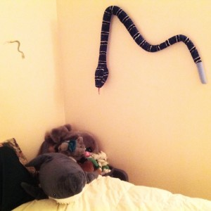 Her bedroom wall