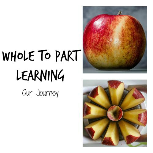 Whole to Part Learning