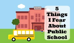 5 Things I Fear About Public School