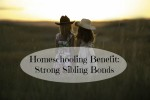 Homeschooling Benefit:  Strong Sibling Bonds