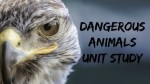 Dangerous Animals Unit Study