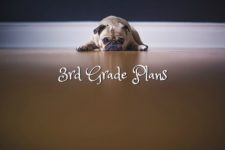 3rd-grade-plans