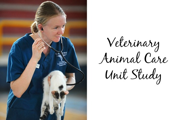 veterinary animal care unit study